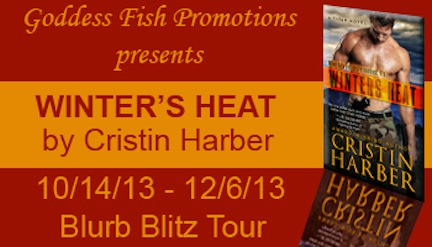 BBT Winters Heat Banner copy.jpg