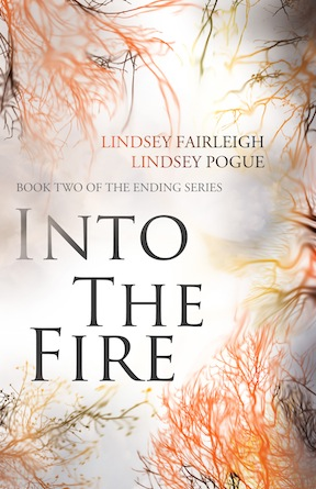 Cover_Into the Fire