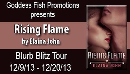 VBT_RisingFlame_Banner