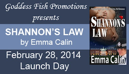 Launch Day Banner Shannons Law copy
