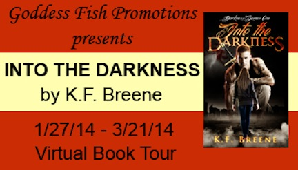VBT Into the Darkness Banner copy