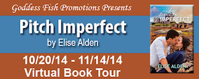 FSVBT_PitchImperfect_Banner copy