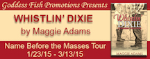NBTM_TourBanner_WhistlinDixie copy