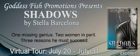 Excerpt_TourBanner_Shadows copy